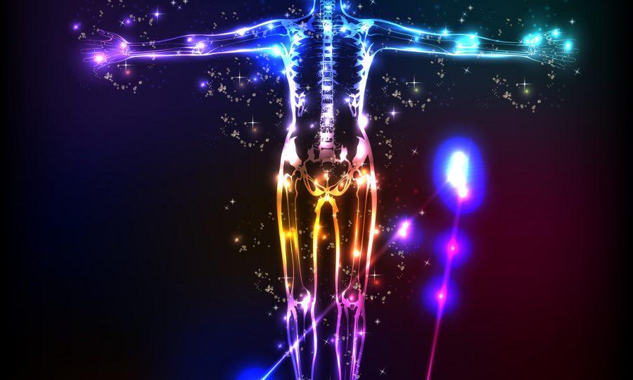 Wist u dat uw lichaam op elektriciteit loopt?